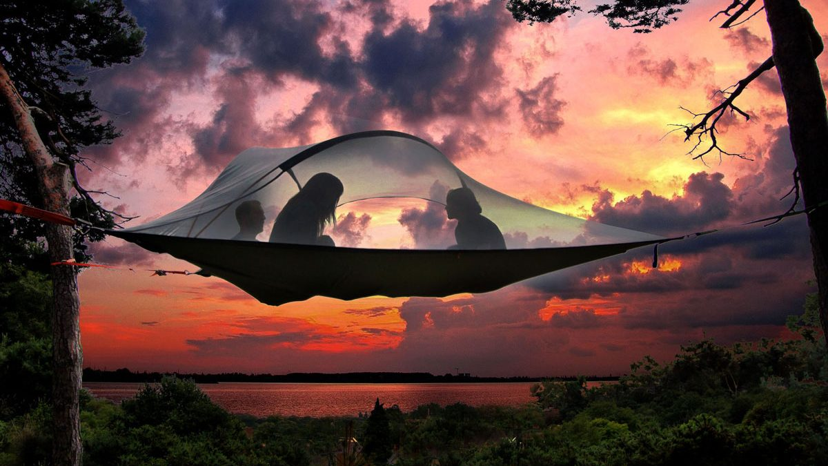 Stingray Tree Tent – Perfect For a Group